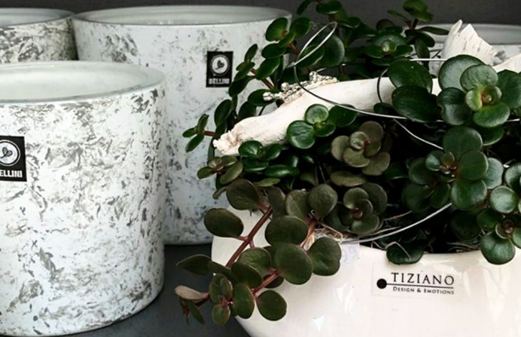 Tiziano Keramik in Hagen kaufen